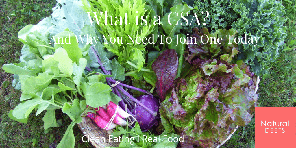 what is a csa